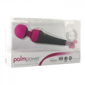 Power Bullet - PalmPower Wand Massager Vrouwen Speeltjes